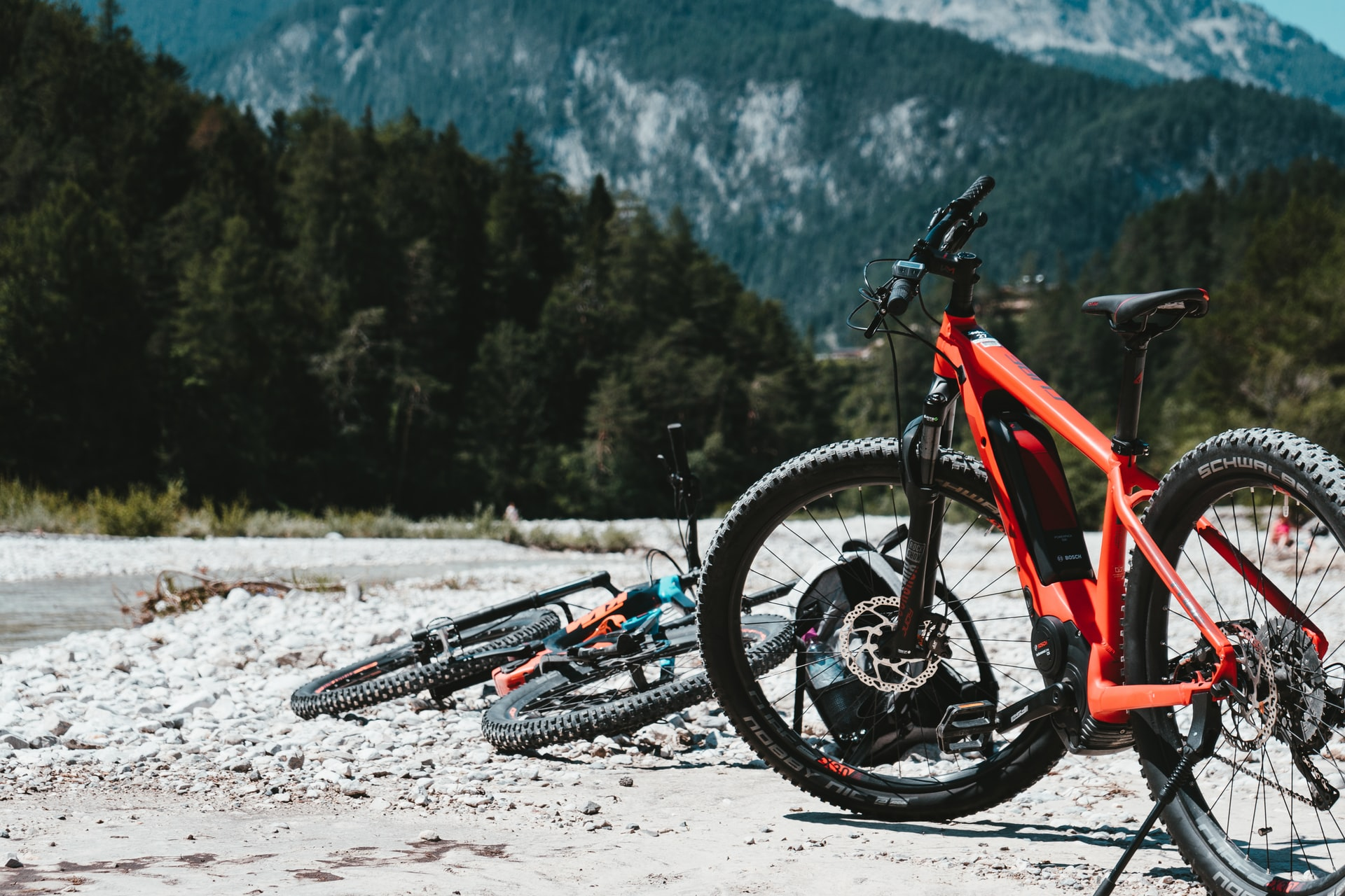electric bikes in the woods